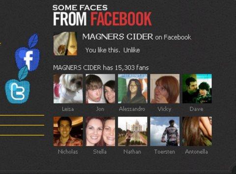 La presenza del brand su Facebook