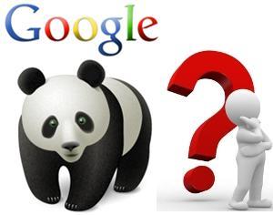 Le domande del Panda Update
