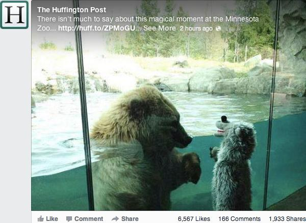 Una foto dell'Huffington Post su Facebook