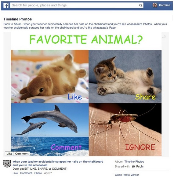 Esempio di like baiting su Facebook