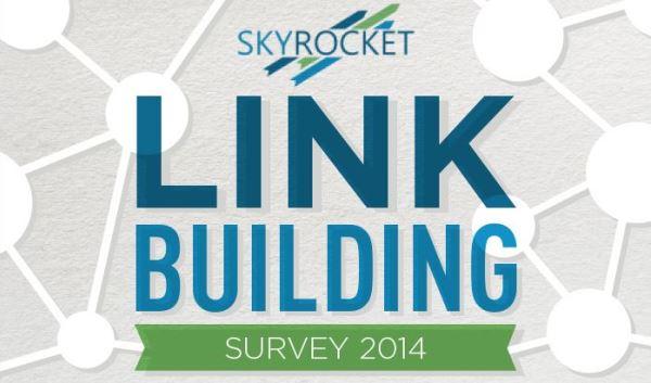 Link Building Survey 2014