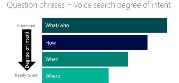 Tipologia delle ricerche vocali