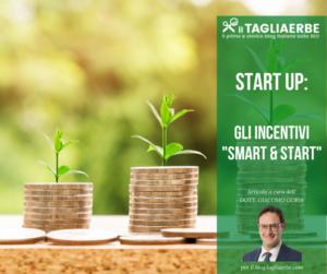 Tagliaerbe - Start up incentivi