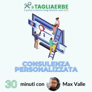 Consulenza 30 minuti Max valle