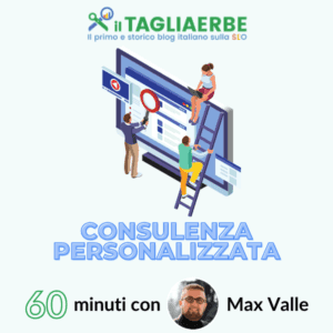 Consulenza Max Valle 60 minuti